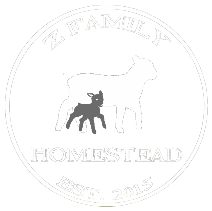 Country Living Experience – Experience Homesteading With Us!